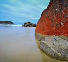 Squeeky Beach, Wilsons Prom, Victoria by April Hudson