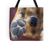 Please, No More Photographs! Tote Bag
