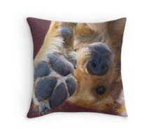 Please, No More Photographs! Throw Pillow