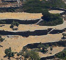 Sifnos - terracing by Ian Mac