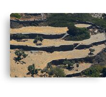 Sifnos - terracing Canvas Print