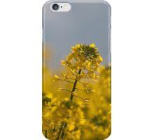 Canola iPhone Case/Skin
