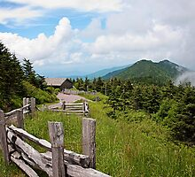 Mt. Mitchell by Amy Goode