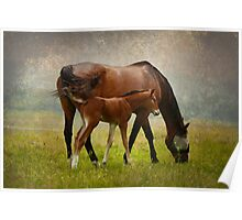 Mom and Baby Poster