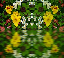 Summer Flowers Reflect by Robert Gipson