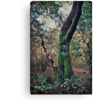 Strong Enough to Hold You Canvas Print