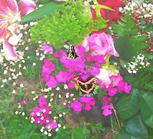 Pink flowers with butterflies by ♥⊱ B. Randi Bailey