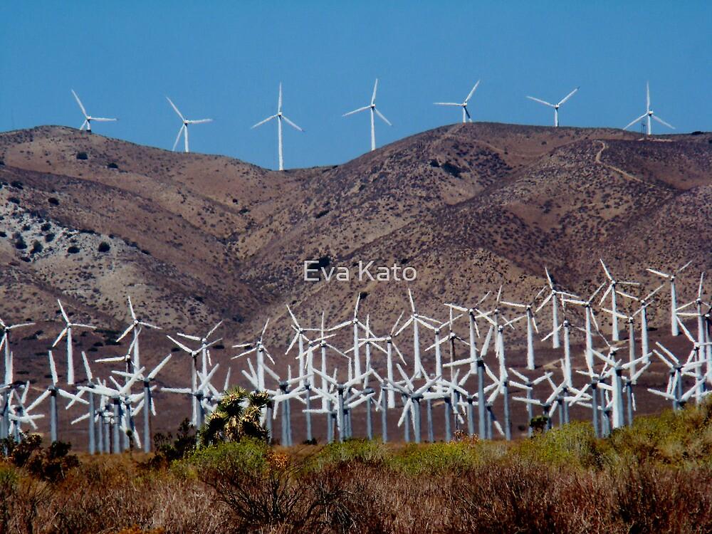 Wind Farm by Eva Kato