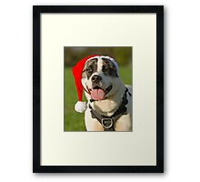 Dog in Santa Hat Framed Print