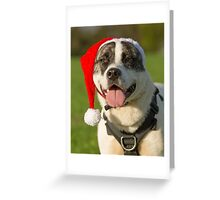 Dog in Santa Hat Greeting Card