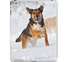 Fun in the Snow iPad Case/Skin