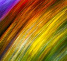Spectrum Of The Mind's Eye by Steve Belovarich
