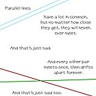 Parallel Lines Never Meet by jblee22