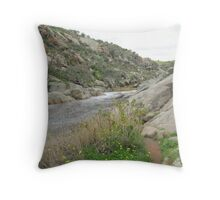 Creek at Mannum Gorge. S.A. Throw Pillow