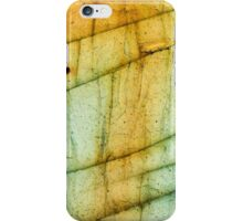 Labradorite Crystal Gemstone Macro iPhone Case/Skin