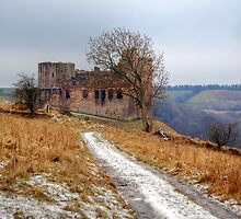 Crichton Castle by Christine Smith