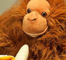 Monkey Business by DonDavisUK