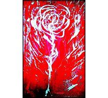 Original Rose Photographic Print