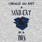 Just a mad cat in a box by Adelidaw