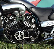 V MAX by Paul  Green