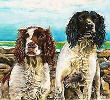 Springer fun in the sun by Jane Smith