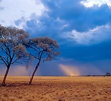 Storm over Mitchell Grass plains, western Queensland by Robert Ashdown