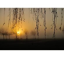 early morning curtain Photographic Print