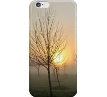 golden light of dawn iPhone Case/Skin