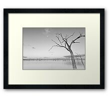 Beauty in Death Framed Print