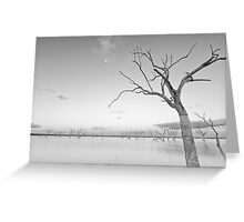 Beauty in Death Greeting Card