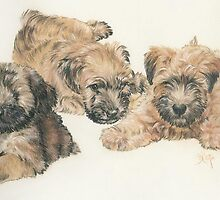 Soft-coated Wheaten Terrier Puppies by BarbBarcikKeith