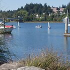 Harbour in Olympia Washington by Allison Waibel