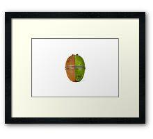 Kiwi and Feijoa Framed Print