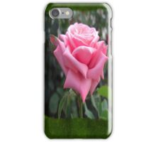 Pink Roses in Anzures 6 Blank P1F0 iPhone Case/Skin