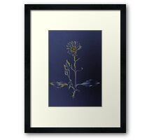 black flower Framed Print