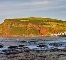 PENNAN by JASPERIMAGE