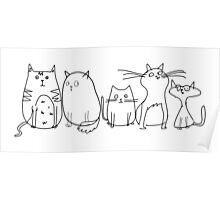 Cute and Funny Crazy Cat Lady Poster
