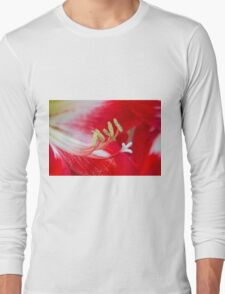 amaryllis flower in the garden Long Sleeve T-Shirt