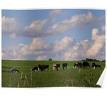 Happy Cows are in PA too! Poster