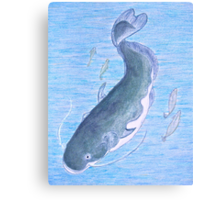 Catfish after the Master K Canvas Print