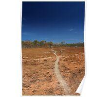 Path most taken Poster