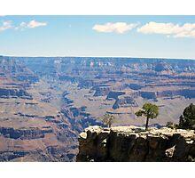 Canyon Ravine Photographic Print