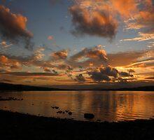 Foyle Colour by Adrian McGlynn