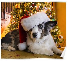 Merry  Maggie Cardigan Christmas Poster