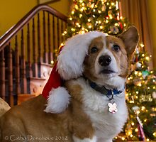 Charlie Merry Christmas by Cathy Donohoue