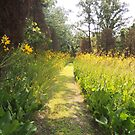 Where the Trail Turns Yellow by TrendleEllwood