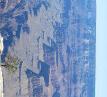 Canyon Ravine Sticker