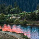 Red Waters by Paul Gana