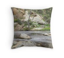 Swirling eddies in the Creek, Mannum Gorge. S.A. Throw Pillow