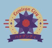 Cerulean City Gym by cassdowns